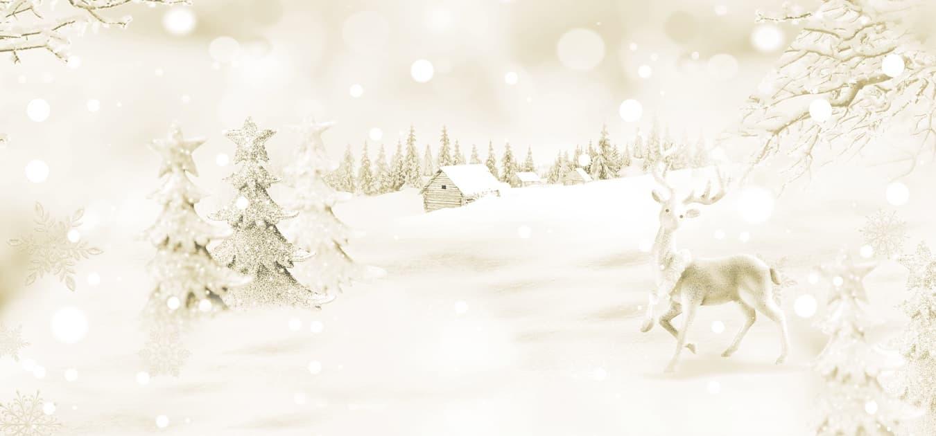 Mille delizie di Natale